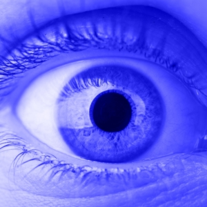 Blue Light Filter - Slit Lamp - at IBEXeye.com